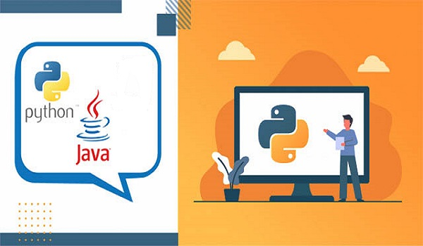 Java VS Python Which is Better for Future