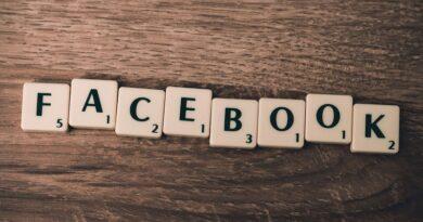 7 Best Reasons To Add Facebook Widget On Your Website