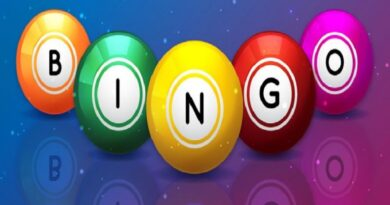 best bingo software